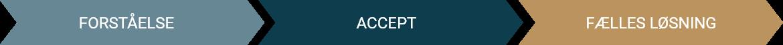 Forståelse - Accept - Fælles løsning